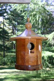 Designed for Bluebirds