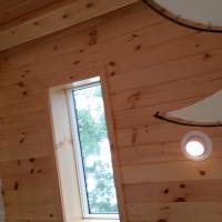 Finished white pine ceiling.