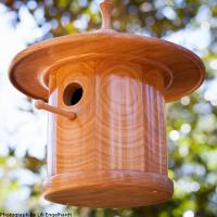 "Cherry ""Zen"" Bluebird house."