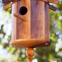Carrotwood birdhouse