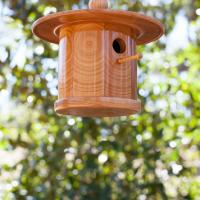 "Cherry ""Zen"" Bluebird house"