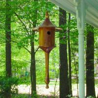 Cedar Contemporary Birdhouse